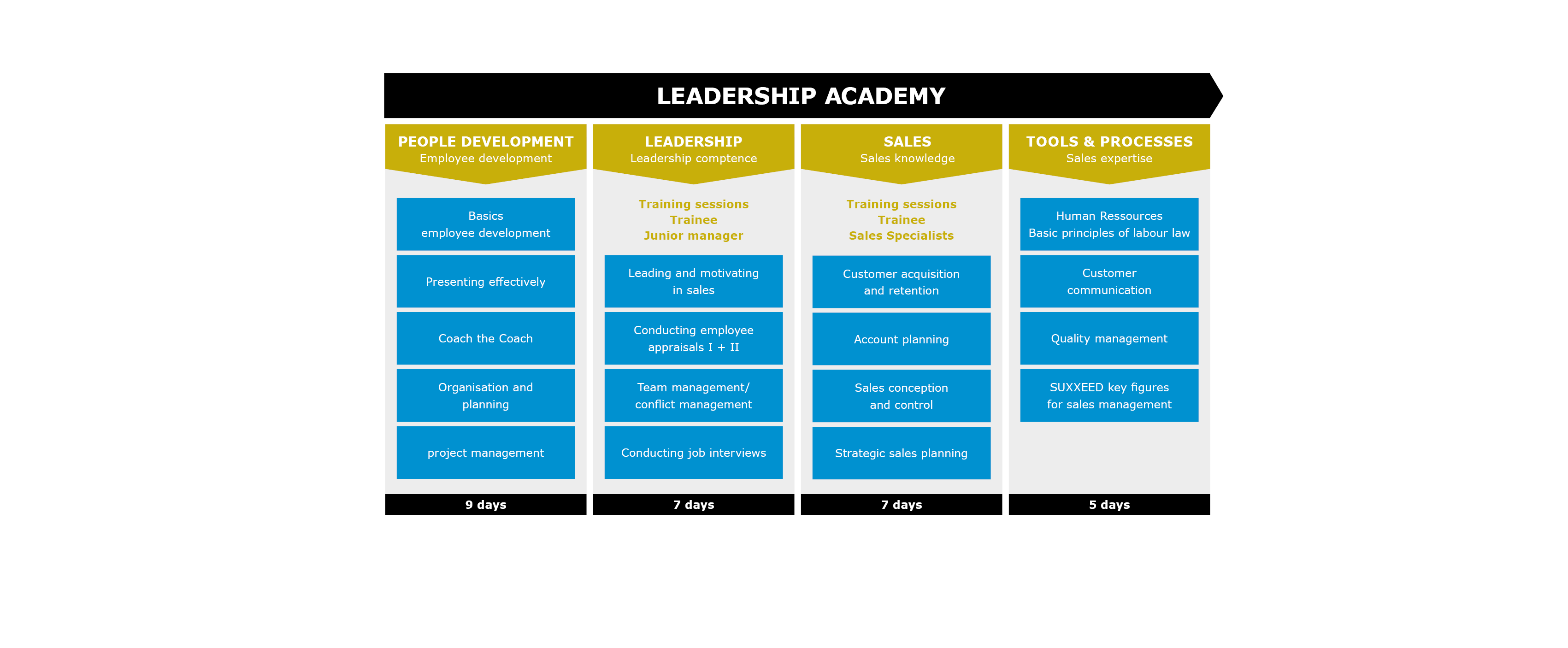 Overview table leadership programme