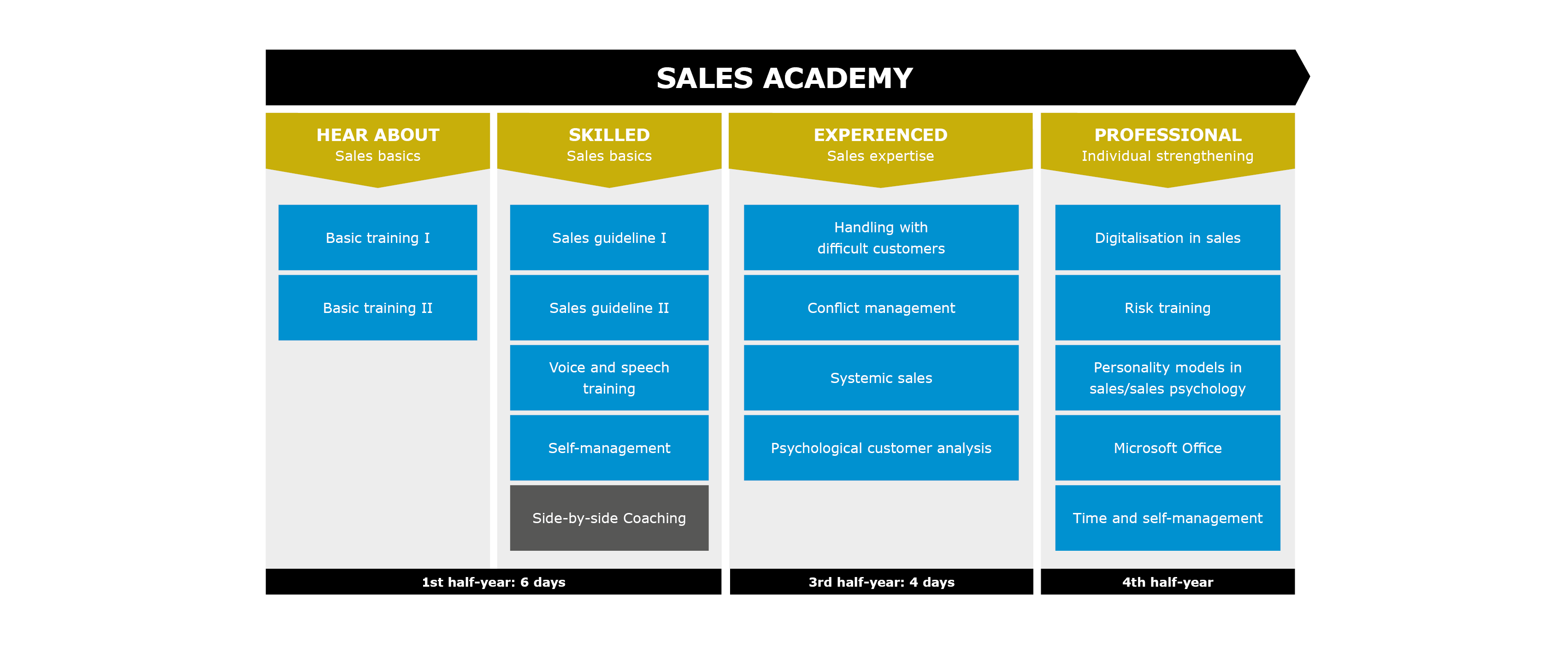 Overview Sales Academy two year programme